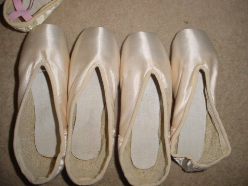 Bolshoi Pointe Shoes