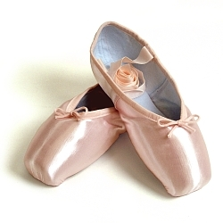 Papillon Avignon pointe shoes