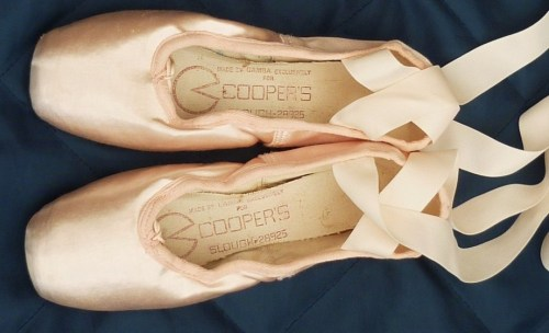 Gamba Cooper Pointe Shoe