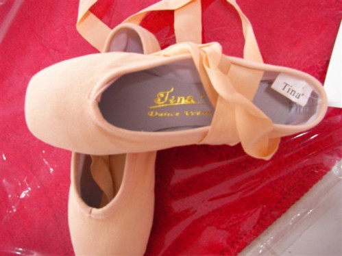 Tina pointe shoes from China
