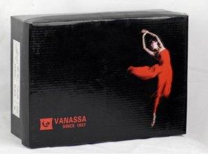 Vanassa Dance Logo