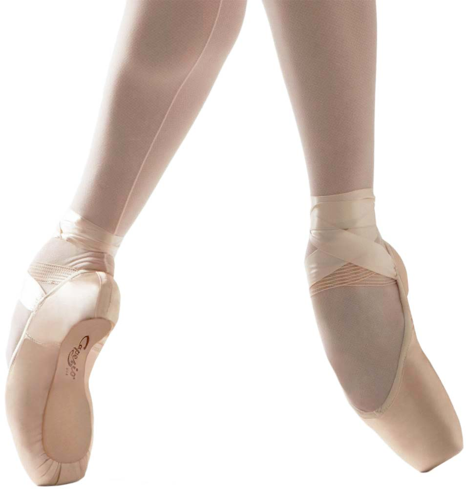 All Brands Of Pointe Shoes