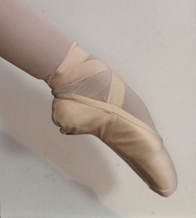 Siberian Swan Pointe Shoes