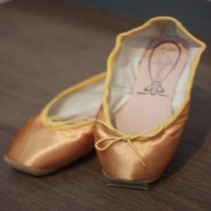 Artline pointe shoes Gold