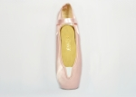 Akces Pointe Shoe Built In Elastic Vamp