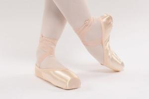 Dansez-Vous Elene Pointe Shoes
