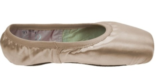 Wear Moi Omega Pointe Shoes